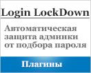 защита админки от подбора пароля